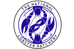 THENATIONALLOBSTERHATCHERY_